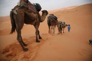 サンティアゴ巡礼その後 ‐モロッコ‐